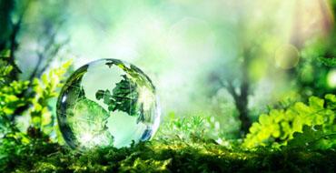 protectia-mediului